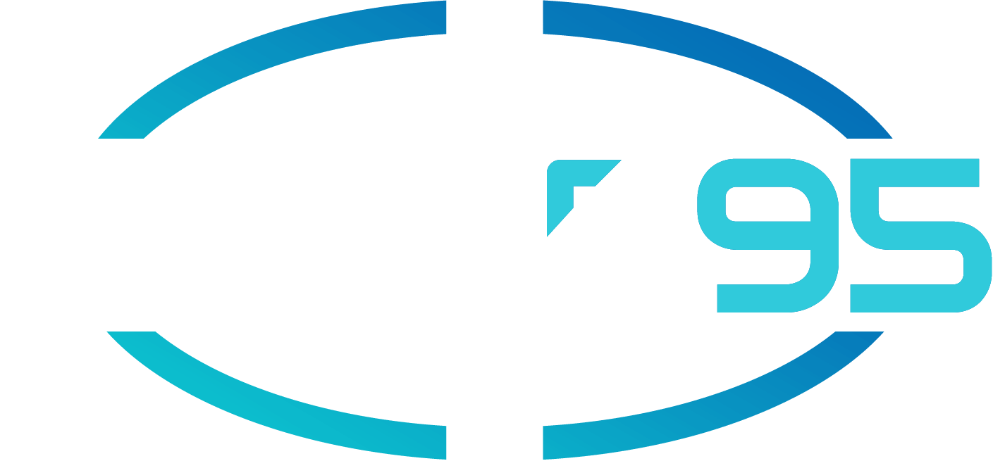 Logo Sine95 Expertise Boostings BIZ & IT Solutions